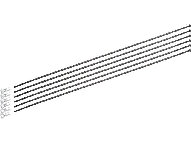 DT Swiss Speichenkit für ARC 1100 Dicut 48 mm